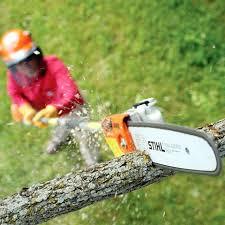 pruner saw